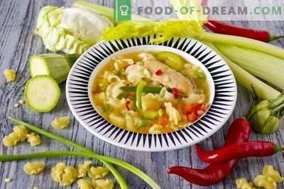 Zuppa di pollo con verdure e pasta