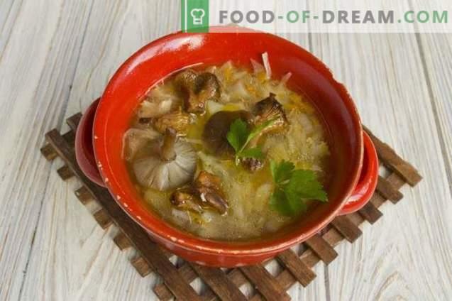 Supa de varză cu ciuperci cu varză