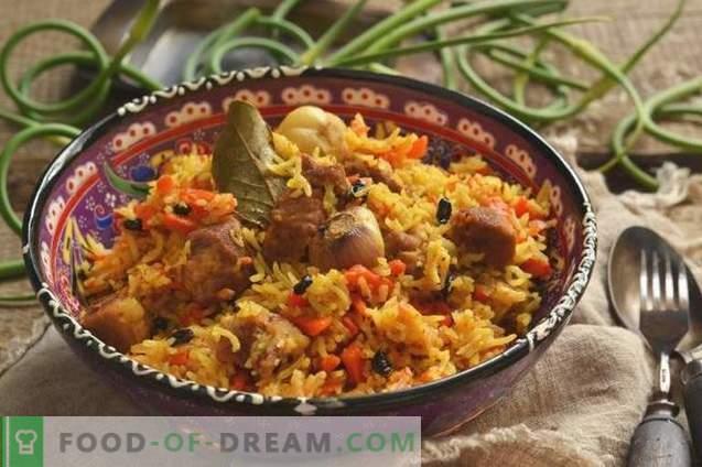 Pilaf delicios cu carne de porc la o rață de pe farfurie