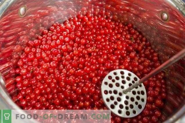 Galaretka z czerwonej porzeczki na zimę