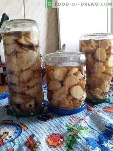Ciuperci albe cu scorțișoară