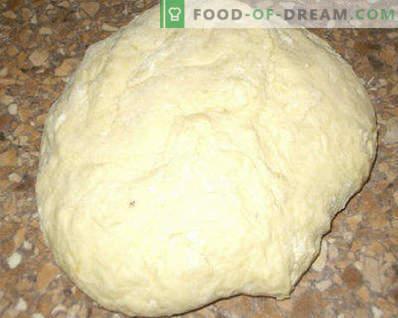 Aluat pentru plăcinte cu lapte acru, drojdie, pentru plăcinte prăjite și coapte