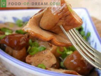 Champignons marinés - les meilleures recettes. Comment cuire correctement et savourer des champignons marinés.