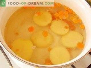 Supa de conopidă