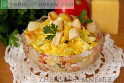 Salată cu brânză - o rețetă cu fotografii și descriere pas cu pas