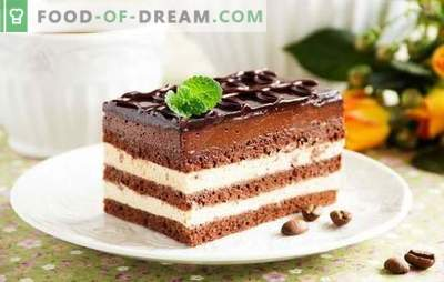 Opera Cake este un desert armonios. Rețete pentru diverse prăjituri de opera cu coacăze, cafea, nuci, cremă elvețiană