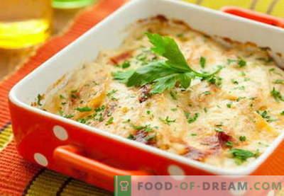 Gobe s sirom so najboljši recepti. Kako pravilno in okusno kuhati gobe s sirom.