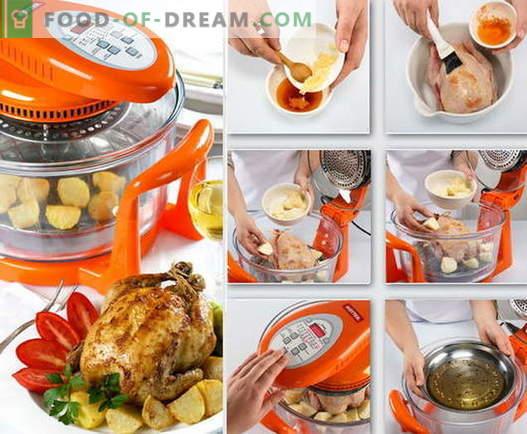 Hen în aerogrill - cele mai bune rețete. Cum să gătești în mod adecvat și gustos pui în cuptoarele cu convecție.