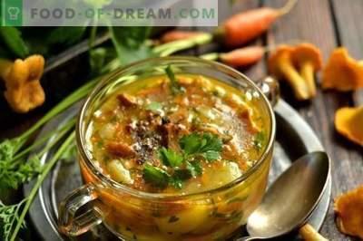 Supă de ciuperci cu chanterelles