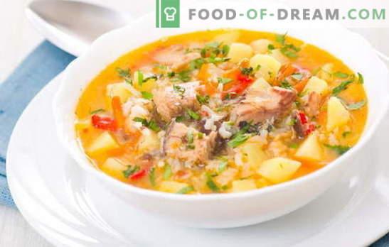 Supa de pește cu orez este un prim curs de primăvară pentru prânz. Cele mai bune retete pentru supă de pește de gătit cu orez