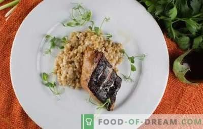 Friptura de somn în cuptor este o completare gustoasă și folositoare la vasul lateral. Cum să gătești friptură de somon în cuptor cu legume, orez, usturoi