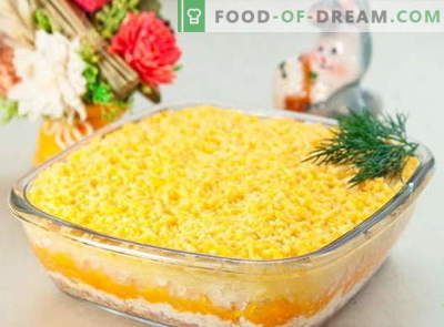 Mimosa salad - the best recipes. How to properly and tasty salad Mimosa.
