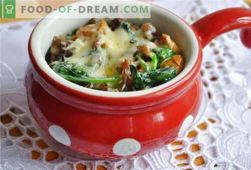 Ciuperci julienne - cele mai bune retete. Cum să gătești în mod corect și gustos juliens cu ciuperci.