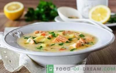 Supă de brânză cu cremă de brânză este un fel de mâncare delicioasă. Cele mai bune retete pentru supe de brânză din brânză topită