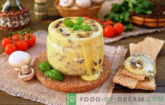 Brânză topită gătită din brânză de vaci la domiciliu profesional. Vacanță de gust cu brânză topită retete de brânză topită la domiciliu