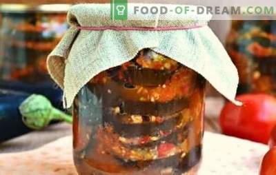 Aperitive picante de vinete pentru iarnă: salată, salată, Ogonyok. Soiuri de aperitive de vinete pentru iarnă cu roșii