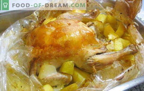 Un pui într-un manșon cu cartofi în cuptor este foarte ușor! Rețete de pui în mânecă cu cartofi în cuptor și bucăți întregi