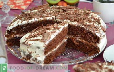 Tort pe kefir - rețete pentru delicii delicioase. Cum să gătesc rapid și gustos un tort pe kefir la domiciliu