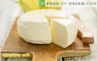 Brânză de casă din lapte și chefir este un produs gustos, delicat și cel mai important natural. Retete dovedite și originale de brânză de casă fabricate din lapte și chefir