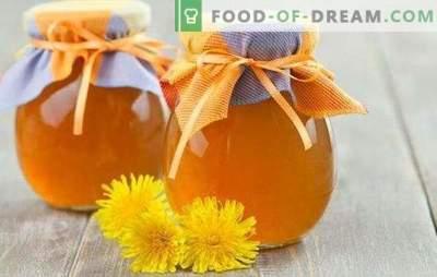 Sirop de păpădie - prepararea vitaminelor! Retete pentru sirop de păpădie sănătos, cu zahăr și lămâie, condimente, ghimbir, miere