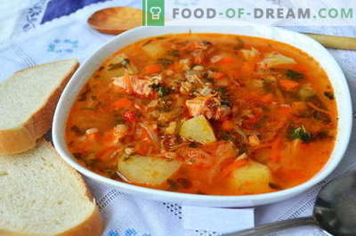 Supă Kharcho - cele mai bune rețete. Cum să gătești în mod corespunzător și gustos supa kharcho.