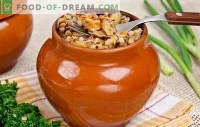 Nous ne serons pas surpris avec le sarrasin dans un pot, alors nous allons vous traiter! Second plats copieux et abordables à base de sarrasin en pots