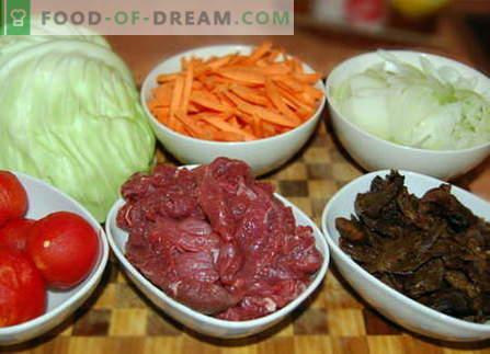Varza cu carne - cele mai bune retete. Cum să gătești corect și gustos varza cu carne.