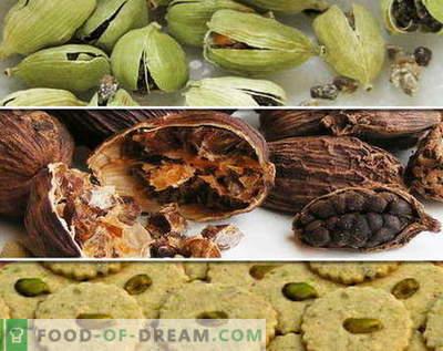 Cardamom - descriere, proprietăți, utilizare în gătit. Rețete cu cardamom.