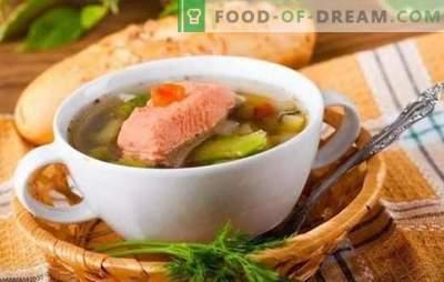 Supă de pește de păstrăv: beneficii corporale și gust impecabil pe aceeași placă. Cele mai bune retete pentru supa de pastrav