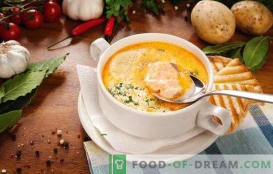 Supă de pește - supă cu un gust unic! Retete pentru supa de peste diferite cu conserve, carcase proaspete si fileuri, varza, fasole