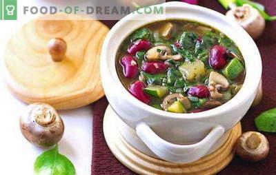 Suflete postate - rețete pentru fiecare zi. Cum să gătești în mod adecvat și gustos supe slabe - rețete pentru fiecare zi și pentru o vacanță