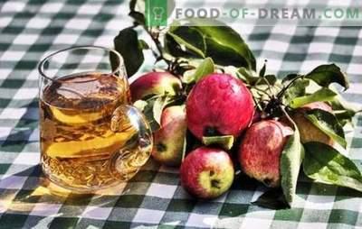 Făcând cidru de casă de mere - produs natural! Cum să pregătești materii prime pentru cidru de mere la domiciliu