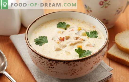 Supă Pollock - un fel de mâncare cu un gust excelent! Gătit supa de pește de porc dreapta cu legume, ouă, cereale, brânză, lapte
