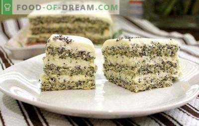 La torta con semi di papavero è un dessert insolito e incredibilmente gustoso. Ricette di torta al papavero semplici e originali