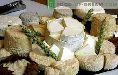 Cum se face brânza de capră acasă: idei pentru întreprinderile mici, luând în considerare sancțiunile. Homemade brânză de capră - mai bine!