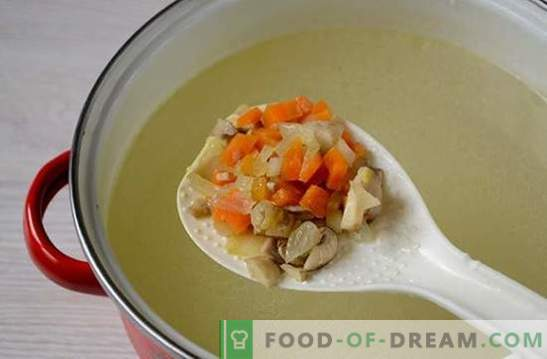 Mushroom soup with chicken and melted cheese: a beautiful and healthy first course. Photo-recipe for soup with chicken and melted cheese: step by step