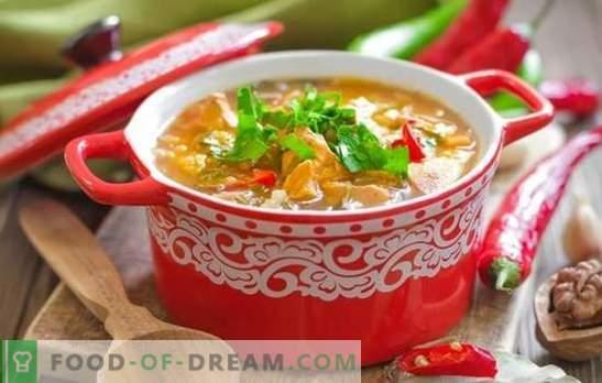 Supă de carne de porc Kharcho: bogată, groasă și picantă. Cele mai bune retete pentru supa de carne de porc kharcho - o cultură georgiană