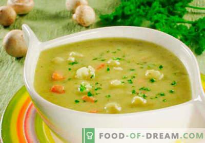 Roomkaas-soep - bewezen recepten. Hoe goed en kook je soep met gesmolten kaas.