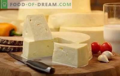 Cum să gătești rapid suluguni la domiciliu: rețeta pentru brânza albă. Gătit brânză blândă suluguni la domiciliu
