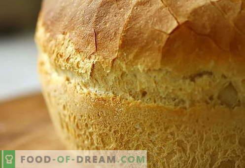 Pâine în cuptor - cele mai bune rețete. Cum să gătiți în mod corespunzător și gustos pâine în cuptor.