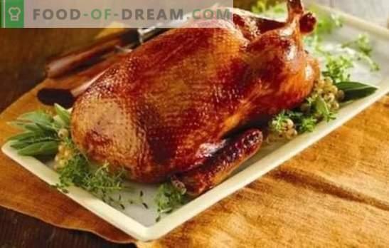 Rasa făcută la domiciliu în cuptor: rețete pas cu pas ale unei păsări rumenite, suculente și parfumate. Gătit rață de casă în cuptor cu rețete pas cu pas
