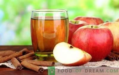 Sucul din mere fără sucuri este o băutură naturală utilă. Cele mai bune retete pentru sucul din mere fără sucuri