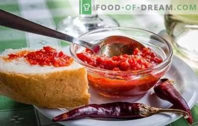 Satsabelul este un adaos parfumat. Variante de satsabel de sos de struguri, prune de cires, prune, cu pasta de tomate, amidon, nuci
