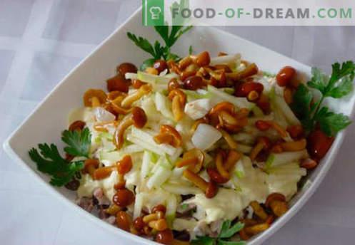 Salată de salată verde - cele mai bune cinci rețete. Cum să gustați în mod corespunzător și să pregătiți o salată cu ciuperci murate.