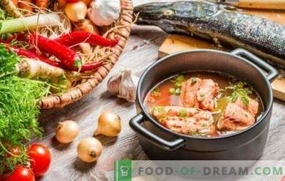 Supă de pește roșu - gust excelent și beneficii maxime. O selecție de cele mai bune rețete de supă de pește roșu cu mei, roșii, caviar roșu