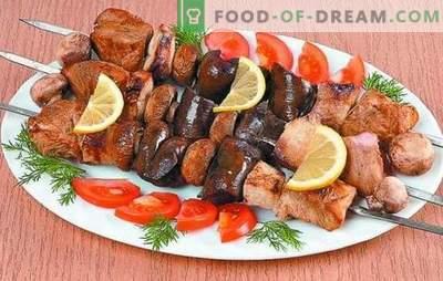Turški kebab: recepti za nežno meso. Skrivnosti marinade za puranje kebabe: začinjeno, hitro, kefir, vino