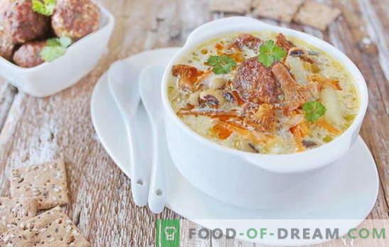 Supă cu chifteluțe - satisfacție plăcută! Diverse rețete pentru supă cu chifteluțe și fasole, tăiței, ciuperci, legume