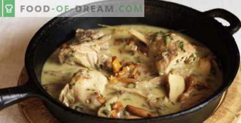 Rabbit în smântână - cele mai bune rețete. Cum să gătești corect și gustos iepure în smântână.