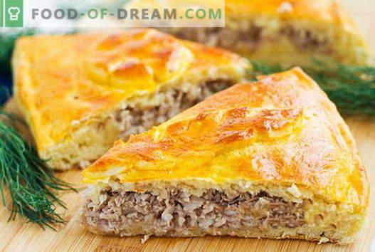 Placintele de pate și carne sunt cele mai bune rețete. Cum să gătești plăcinte de carne în mod corect și gustos.