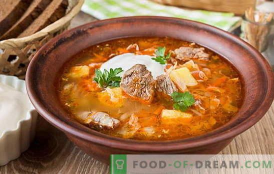 Supă de varză proaspătă - 10 cele mai bune rețete. Supă de varză proaspătă cu carne de vită, pui, carne de porc, carne afumată, fasole